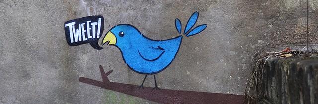 Twitting bird