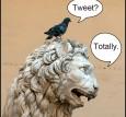 lion and bird