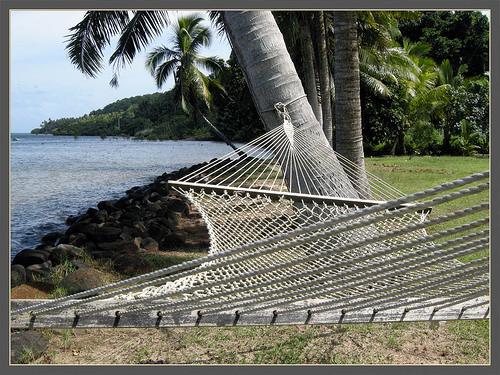 hammock on the shore
