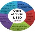 Cycle of Social & SEO